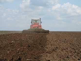 агротехника в поле
